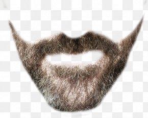 Beard Clipart - Beard Clip Art PNG