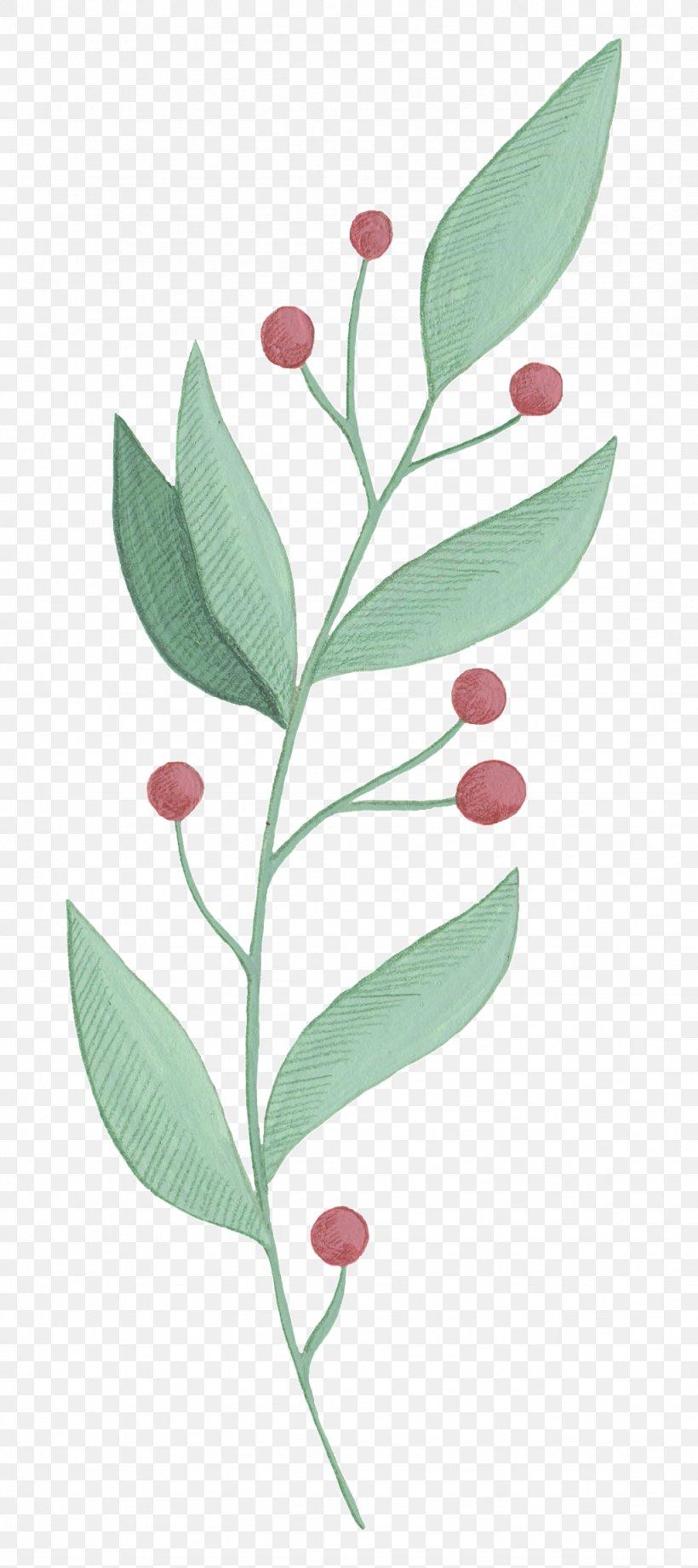 Plant Flower Leaf Tree Woody Plant, PNG, 1024x2302px, Plant, Branch, Flower, Leaf, Plant Stem Download Free