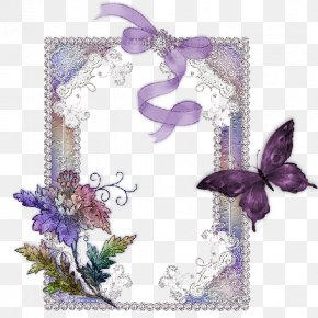 Decorative Pattern Gauze Border - Picture Frame Blog Flower Clip Art PNG