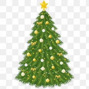 Christmas Tree - Clip Art Christmas Tree Christmas Day Christmas Ornament PNG