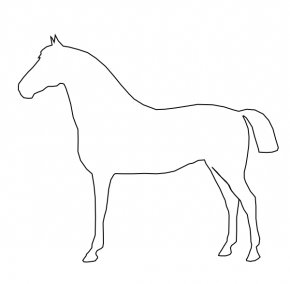 Horse Outline - Tennessee Walking Horse Conformation Of The Horse Drawing Clip Art PNG