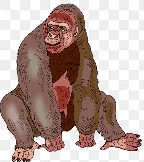 Gorilla Photos Free - Western Gorilla Free Content Clip Art PNG