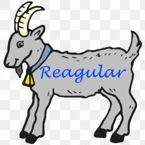 Sheep - Pygmy Goat Sheep Nigerian Dwarf Goat Coloring Book Clip Art PNG