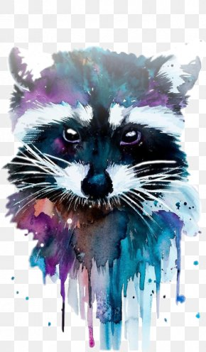 Painting - Watercolor Painting Drawing Raccoon Art PNG
