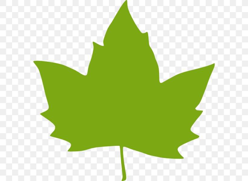 Leaf Green Clip Art, PNG, 600x598px, Leaf, Autumn, Autumn Leaf Color, Blog, Clip Art Download Free