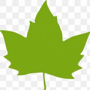 Leaf Clip Art - Leaf Green Clip Art PNG