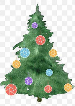 Christmas Tree - Christmas Tree Photography Watercolor Painting PNG