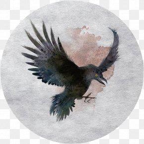 Eagle Material - Tamaulipas Crow Bird Hawk PNG