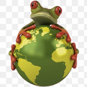 Holiday Ornament Tree Frog - Frog Green True Frog Toad Tree Frog PNG