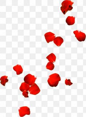 Rose Petals Drift Valentines Day - Rose Petal Clip Art PNG