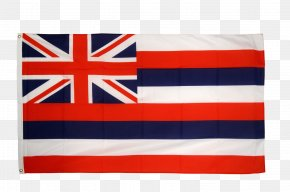 Usa Flag - Flag Of Hawaii State Flag Flag Of The United States PNG