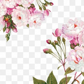 Flowers Decoration Material - Centifolia Roses Paper Flower Garden Roses Party PNG