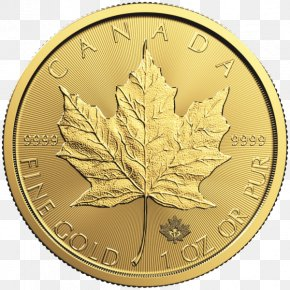 Gold Leaf - Canadian Gold Maple Leaf Bullion Coin PNG