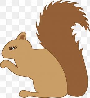 Squirrel - Eastern Gray Squirrel Tree Squirrel Clip Art PNG