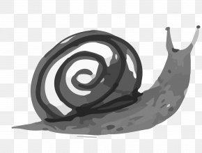Cartoon Snail - Ink Wash Painting Drawing Watercolor Painting PNG