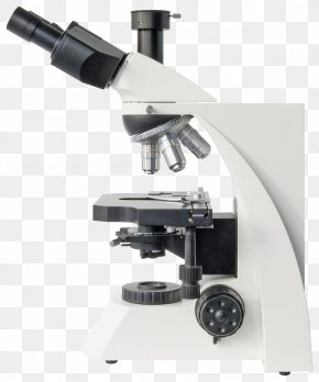 Optical Microscope - Optical Microscope Bresser Optics Science PNG
