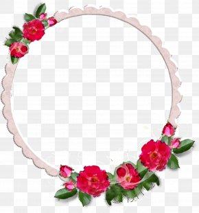 Flower Frames - Flower Rose Photography PNG