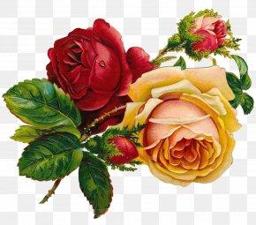 Artwork - Drawing Rose Flower Art Sketch PNG