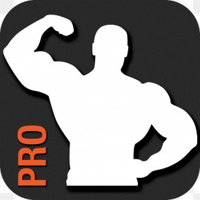 Bodybuilding - Total Gym Physical Fitness Fitness App Fitness Centre Personal Trainer PNG