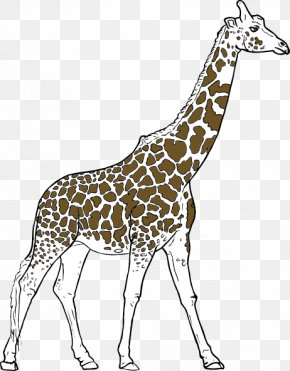Animal Wildlife Cliparts - Youre Avin A Giraffe Amazon.com Clip Art PNG