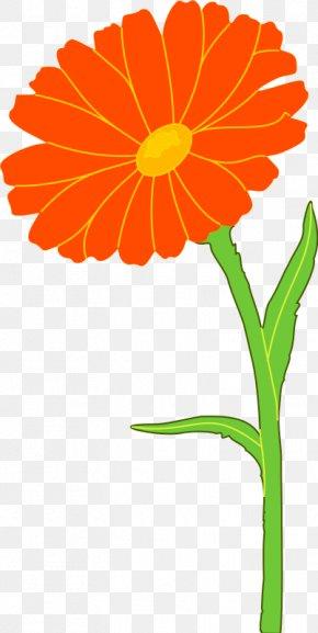 Marigold Cliparts - Mexican Marigold Calendula Officinalis Flower Clip Art PNG