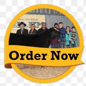 Order Now - Golden Flo Car Dealership Customer Service Taylorville, IL PNG