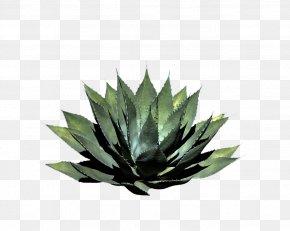 Plant - Plant Pixel Shrub PNG