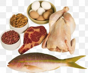 Non-veg Food - High-protein Diet Food Eating PNG