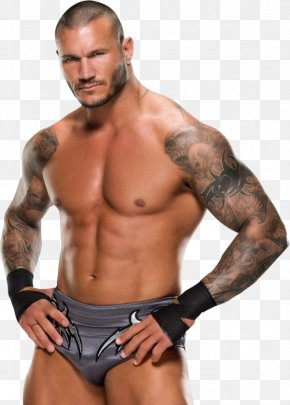Randy Orton Transparent Background - Randy Orton Display Resolution Download PNG