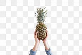 Waved Pineapple - Pineapple Fruit Theme Desktop Environment Wallpaper PNG