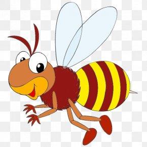 Honey Bee - Western Honey Bee Honey Bee Life Cycle Bumblebee Clip Art PNG