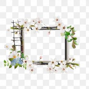Flower - Floral Design Picture Frames Flower PNG