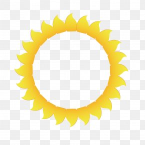 Vector Yellow Petal Sun Circle - Yellow Petal Euclidean Vector PNG