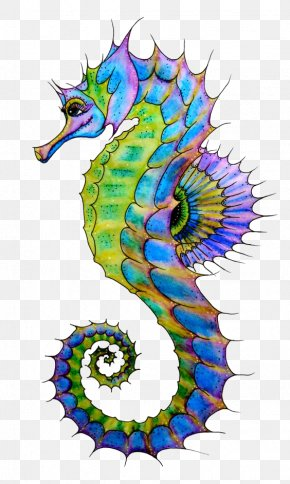 Hippo - Seahorse Drawing Art Clip Art PNG