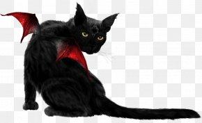 Red Wings Black Cat - Bombay Cat Black Cat Kitten Whiskers PNG