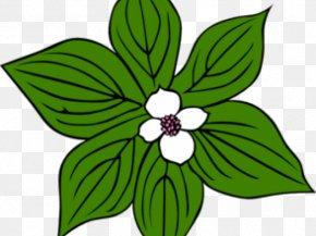 Blue Magnolia - Flower Vector Graphics Clip Art Floral Design Petal PNG