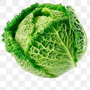 Cauliflower - Cabbage Roll Savoy Cabbage Cauliflower Brussels Sprout Red Cabbage PNG