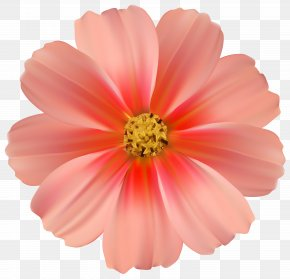 Fun Daisy Cliparts - Pink Flowers Rose Clip Art PNG