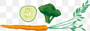 Carrot Cauliflower Cucumber Vector Material - Breakfast Food Eating PNG
