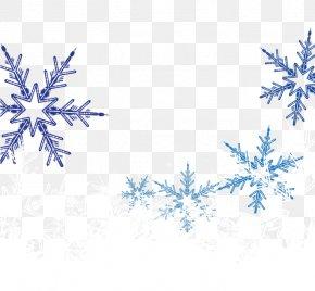 Vector Snowflake Decoration - Snowflake PNG