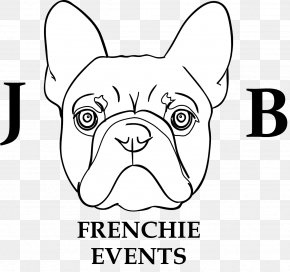 Puppy - Dog Breed Puppy Non-sporting Group French Bulldog Milton Keynes PNG