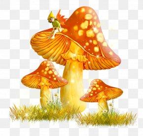 Golden Mushroom - Mushroom Fungus Clip Art PNG