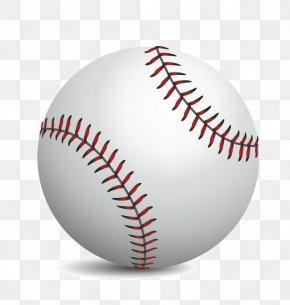 Vector Realistic Baseball - MLB Baseball Softball Sport PNG