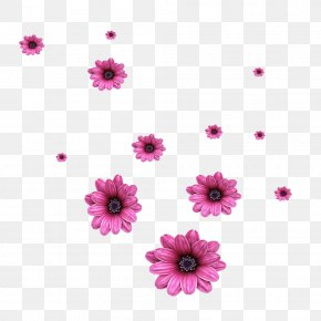 Scattered Flowers - Flower Computer File PNG