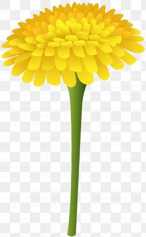 Dandelion Clip Art Image - Common Dandelion Flower Computer File PNG