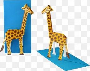 3d Giraffe - 3D Computer Graphics Low Poly FBX Wavefront .obj File Northern Giraffe PNG