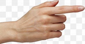 Hands , Hand Image Free - Finger Hand PNG