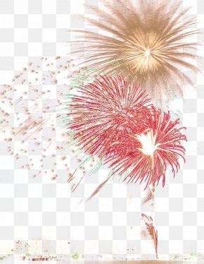 Fireworks Explosion - Fireworks Firecracker New Year PNG