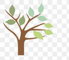 Tree-lined - Tree Branch Twig Plant Leaf PNG