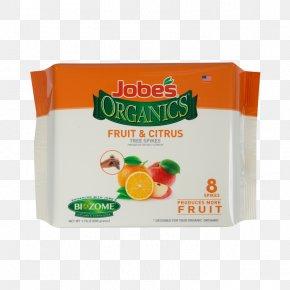 Orange Fruit Tree - Organic Food Fruit Tree Ugli Fruit Fertilisers PNG